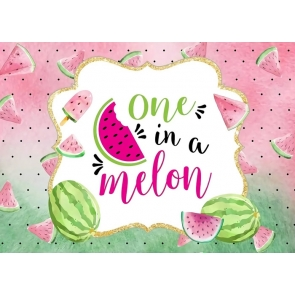 Watermelon One in a Melon 1st Happy Birthday Backdrop Photography Background Decoration Prop