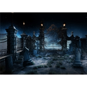Desolate Horror Cemetery Halloween Backdrop Party Stage Photography Background