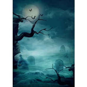 Grey sky Cemetery  Withered Tree Spider Web Halloween Backdrop