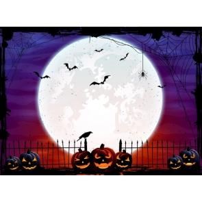 Spider Web Big Moon Pumpkin Background Halloween Backdrop