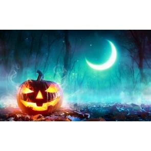 Blue Light Covering Moon Forest  Pumpkin Halloween Backdrop
