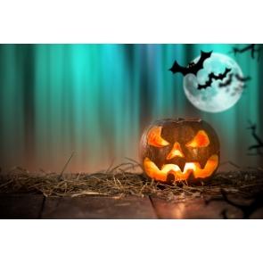 Halloween Pumpkin Lantern Bats Blue Light Backdrop Background for Photography
