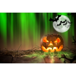 Pumpkin Lantern on Straw Bats Green Light Halloween Party Photo Wall Backdrop
