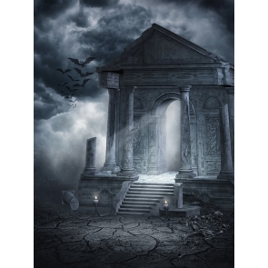 Horrible Scary Black And White Night Sky Halloween Party Backdrop