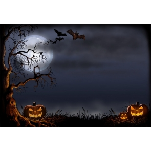 Black Night Sky With Dead Tree Spider Web Scary Pumpkin Halloween Party Backdrop