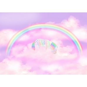 Baby Shower Rainbow Backdrop Vinyl Photography Background